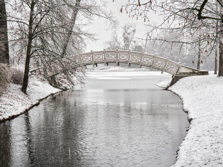 Wörlitzer Park - Im Schnee