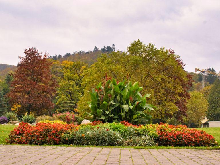 Bad Harzburg - Kurpark