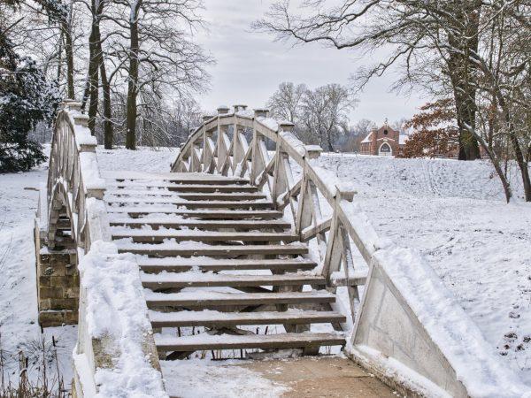 Winter im Luisium