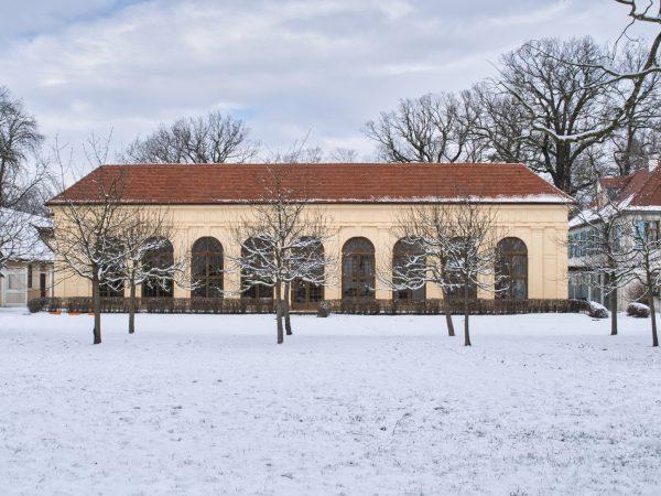 Winter im Luisium - Orangerie