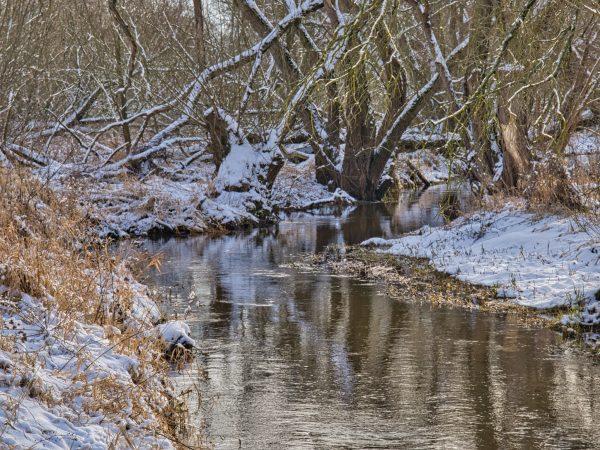 Winter auf der Wasserburg Roßlau