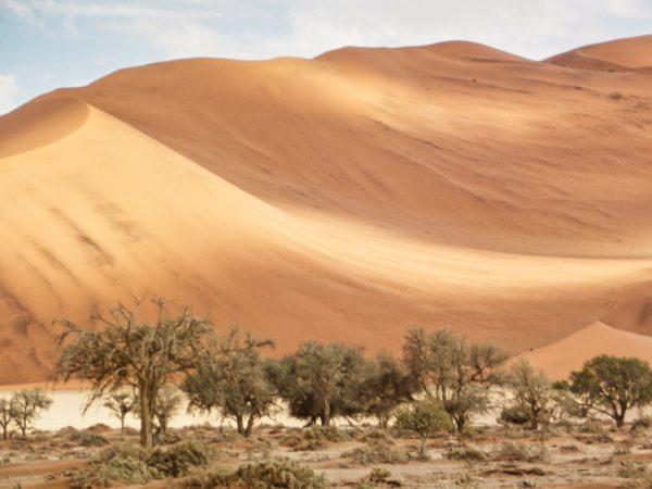 Namib-Naukluft-Park